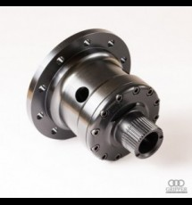Audi A4 Quattro RS Gripper Differential - Rear