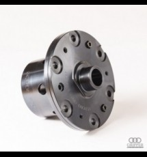 Ford (English 22 Spline Steel) (Lotus/Elan/Cortina/Escort) Gripper Differential - 1.3/8 22T