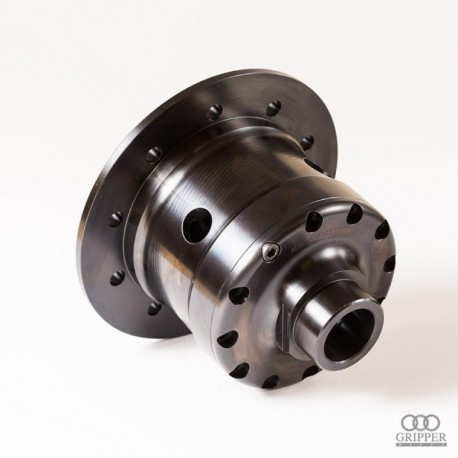Healey 3000 Gripper Differential